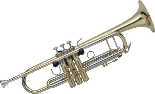 für Trompete Stagg SLA-TRH Wandhalter