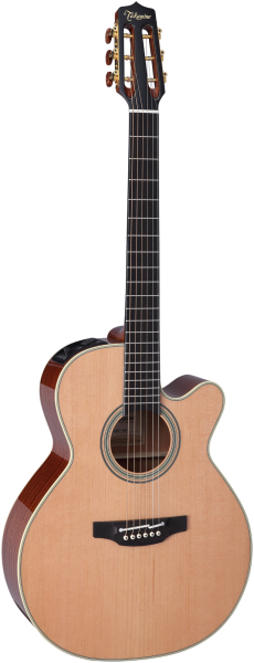Takamine Westerngitarre, Custom Wide Neck, CNC-WS1, NEX/C