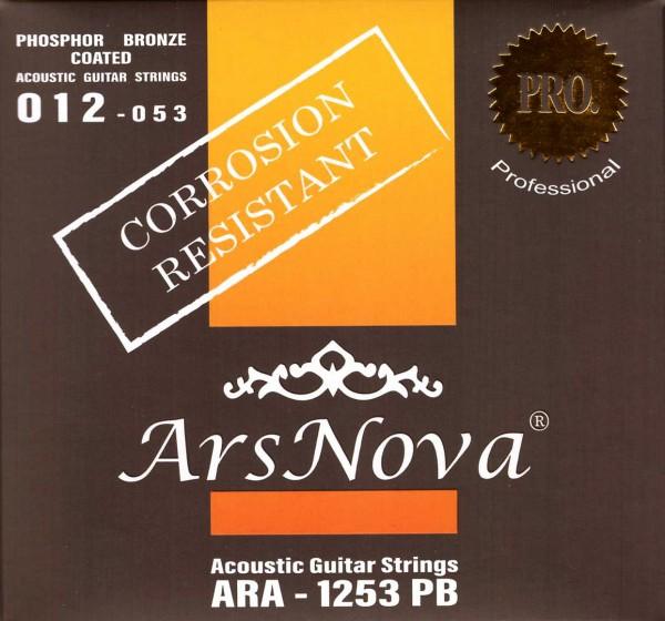Ars Nova ARA 1253 PB Saiten für Akustikgitarre
