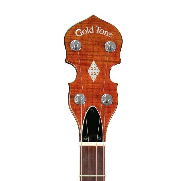 GOLD TONE 5-Saiter Bluegrass Banjo mit Flansch, breiter Hals, inklusive Case BG-250FW