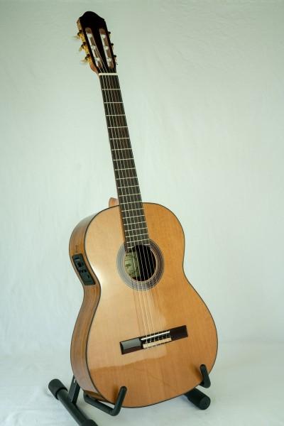 Raimundo 120-E Konzertgitarre Zeder mit Tonabnehmer