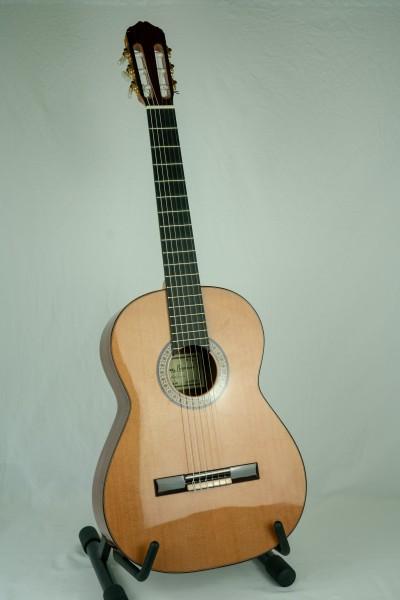Raimundo 136 Konzertgitarre Zeder